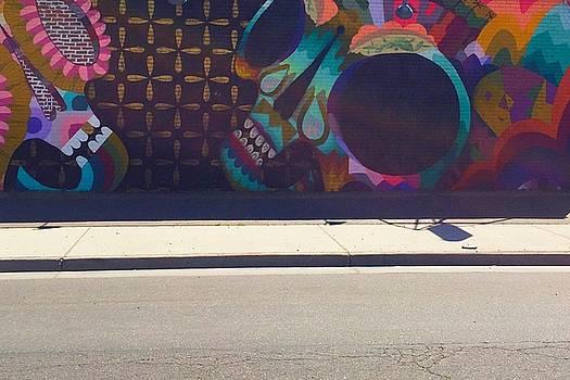 Skull at the Crosswalk  by Randi Schultz