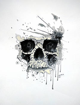 Skull by Edwin Alverio