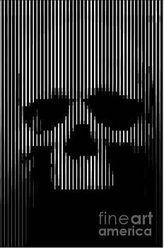 Skull Lines by Sassan Filsoof