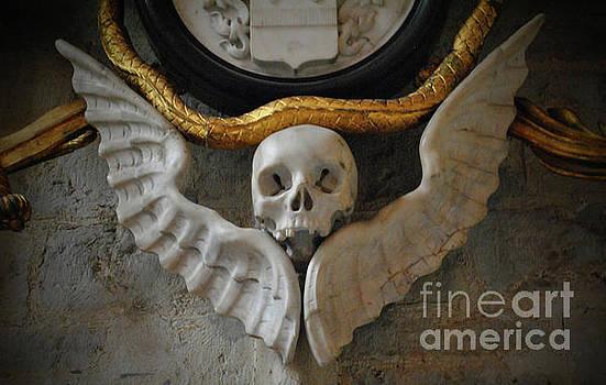 Jost Houk - Skull of Antwerp