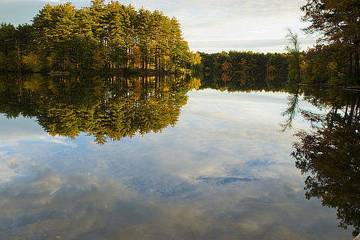 Sky and Foliage Reflection by Michael Wall