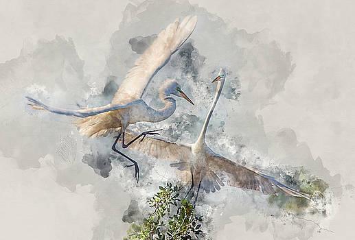 Sky Dance by Gordon Ripley