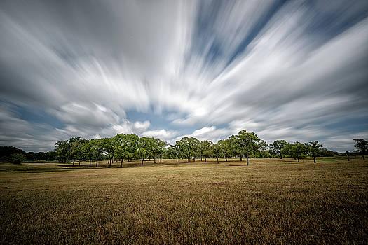 Sky Fall by Cathy Neth