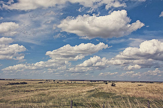 Sky For Miles by Anita Hohl