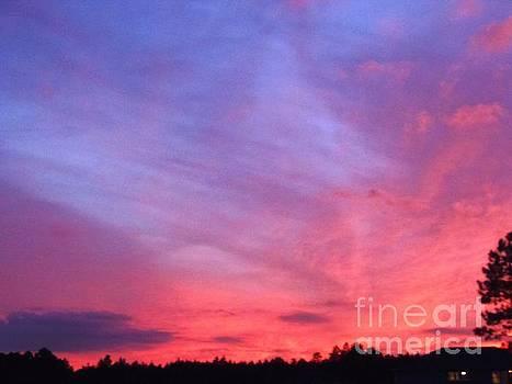 Sky by Isabel Honkonen