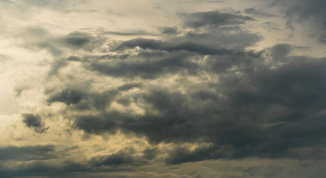Sky Life Some Have Blue Eyes by Steven Poulton
