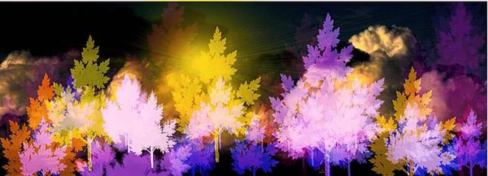 Sky Lights by Kathleen Storey