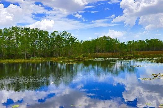 Sky reflections by John Kearns