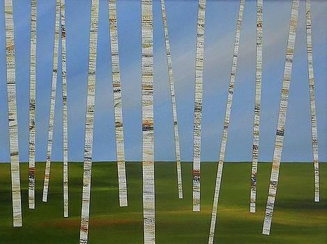 Sky Through Birches by Susan Himmel