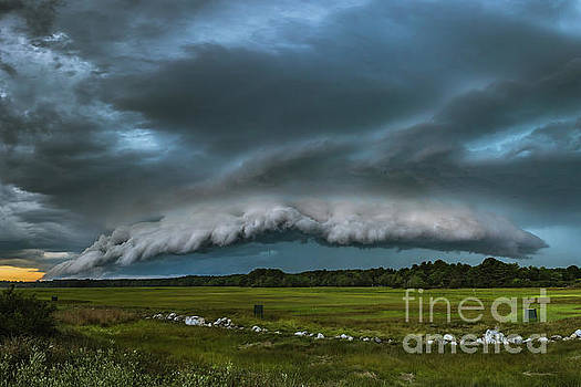 Skyfall by Joshua Blash