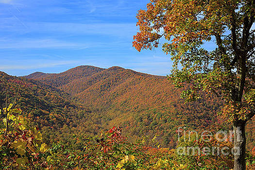 Skyline Drive Overlook between Eaton Hollow and Simmons Gap by Louise Heusinkveld