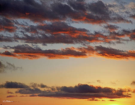 Sky's no limit by Tim Fitzharris