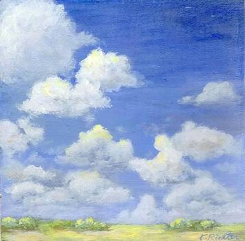skyscape - Everglades by Keiko Richter