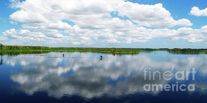 Skyscape Reflections Blue Cypress Marsh Conservation Area Near Vero Beach Florida C2 by Ricardos Creations