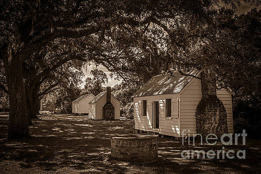 Dale Powell - Slave Cabins on the Grounds of McLeod Plantation
