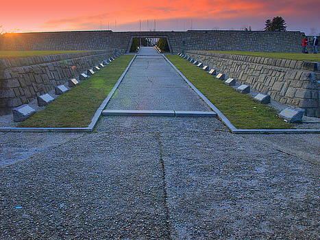 Slavin cemetery by Tomas Trojcak