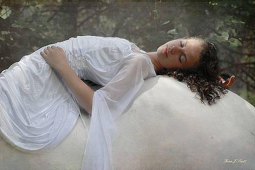Sleep of innocents by Fran J Scott