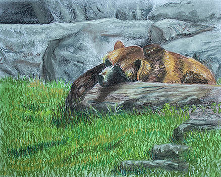 Sleeping Bear by Dorothy Riley
