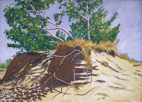 Sleeping Bear Dunes Dune Series I by D T LaVercombe