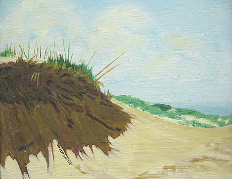 Sleeping Bear Dunes Dune Series three by D T LaVercombe