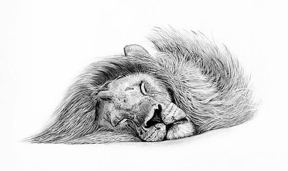 Sleeping Beauty by Kern Frost