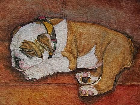 Sleeping Bully by Pam Utton