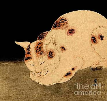 Peter Ogden - Sleeping Cat Kawanabe Kyosai Japanese Meiji Period