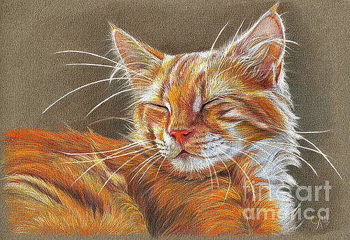 Sleeping Ginger kitten CC12-005 by Svetlana Ledneva-Schukina