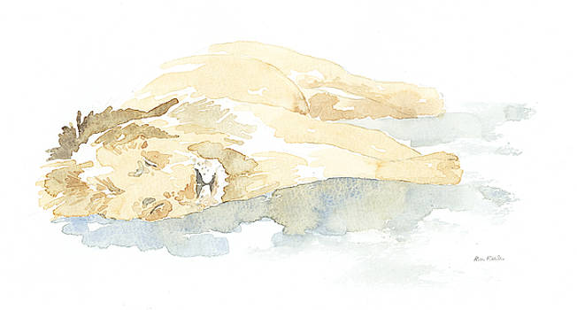 Sleeping Lion Field Sketch by Alison Nicholls