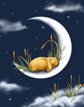 Sleeping on the moon by Veronica Minozzi