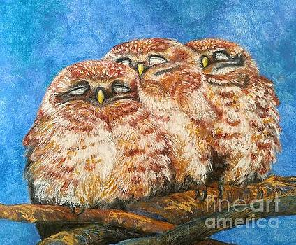 Sleeping Owlets by Linda Eversole