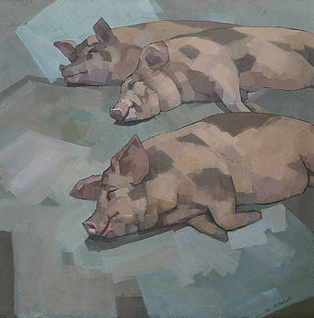 Sleeping Pigs by Steve Mitchell