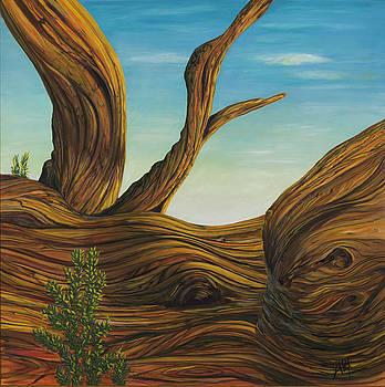 Sleeping Pine by Alexandra  Kube