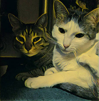 Sleepy Cats by Unhinged Artistry