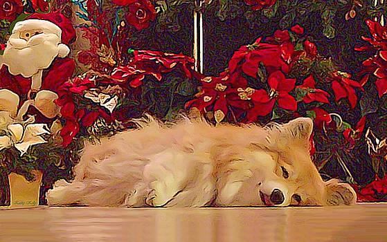 Kathy Kelly - Sleepy Holiday Corgi Surrounded by Poinsettias.