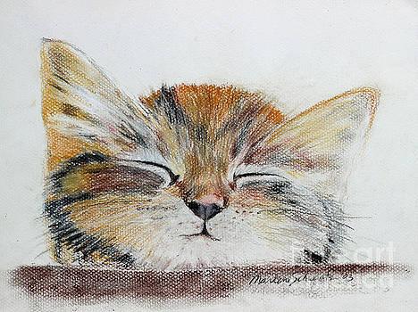 Sleepyhead by Marlene Schwartz Massey
