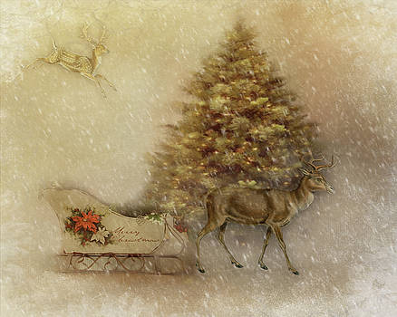 Sleigh Ride by TnBackroadsPhotos
