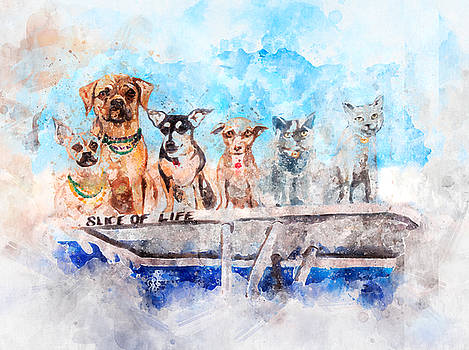 Slice of Life Watercolor by Michael Colgate