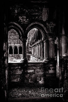RicardMN Photography - Sligo Abbey Interior BW
