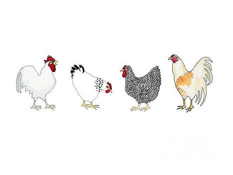 Sloggers Chickens by Sarah Rosedahl