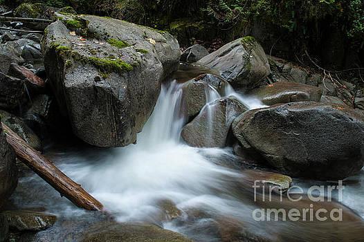 Rod Wiens - Slollicum Creek