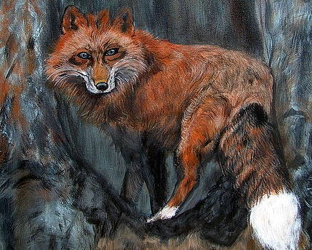 Sly Fox by Vickie Wooten