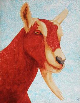 Sly Old Devil by John Pinkerton