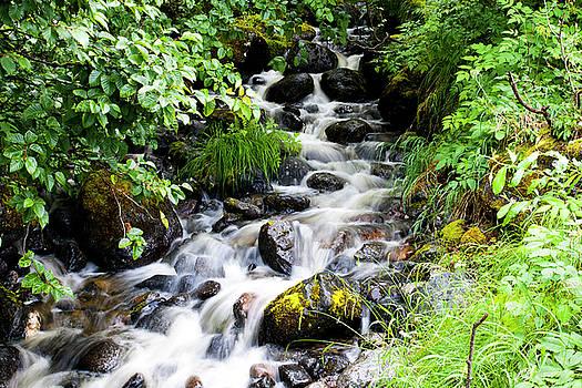 Anthony Jones - Small Alaskan Waterfall