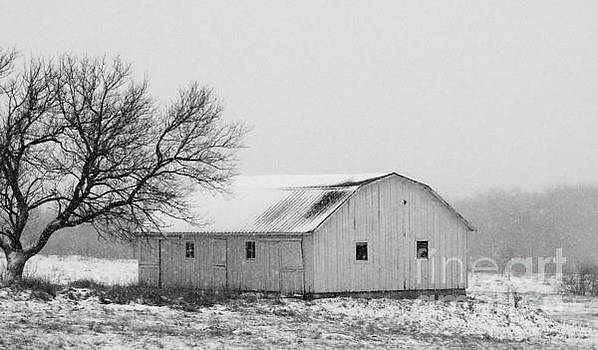 Small Barn in White by J L Zarek
