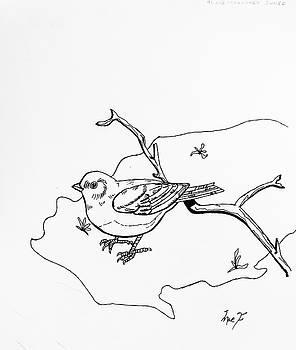 Small Bird by Dean Italiano