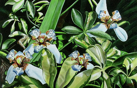 Small Blue Orchids by Suzahn King