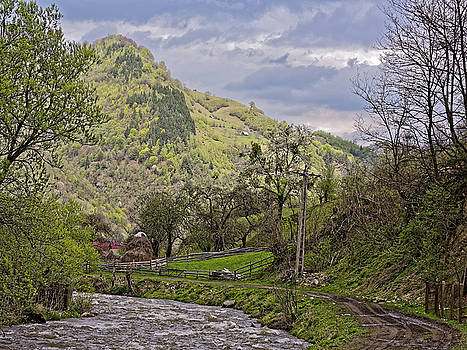 Small creek in Rau Sadului Sibiu County Romania by Adrian Bud