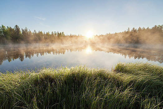 Small forest lake at sunrise by Juhani Viitanen