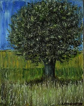Small Olive Tree 2 by Dimitra Papageorgiou